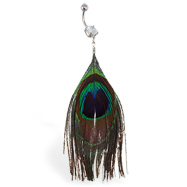 Belly ring with large dangling peacock feather