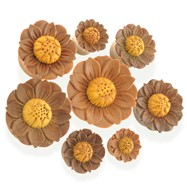 Pair Of Organic Wooden Lotus Flower Saddle Fit Plugs