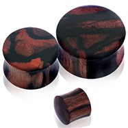 Pair Of Organic Areng Zebrawood Saddle Plugs