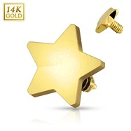 14 Karat Solid Yellow Gold 4mm Star Dermal Top Internally Threaded